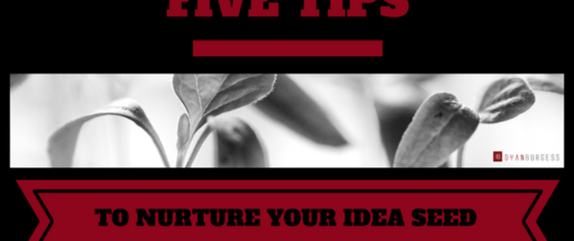 Five Tips to Nurture Your Idea Seed