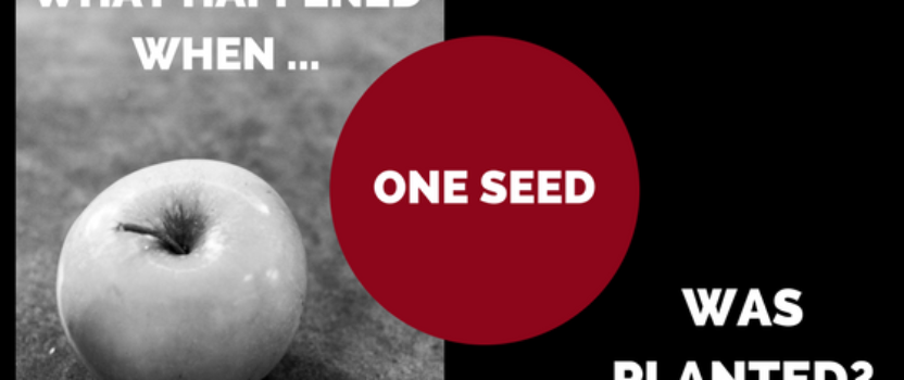 What Happened When One Seed Was Planted?