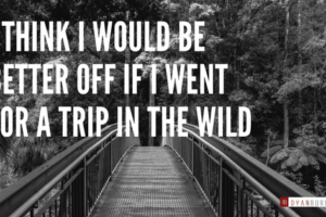 I think I would be better off if I went for a trip in the wild
